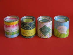 Spring Collection of teas